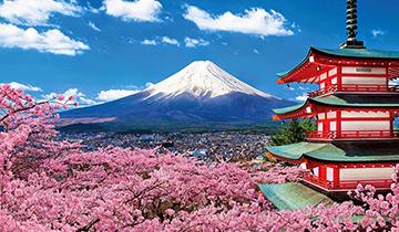 Маркетинговые исследования и поиск партнеров в Японии